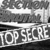 sectionbrutal