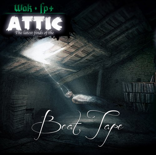 The latest finds of the attic cover maxi