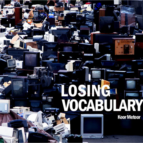 Losing vocabulary cover maxi